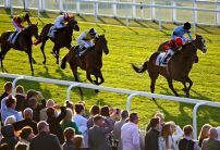 Sunday 25th October - Best Bets