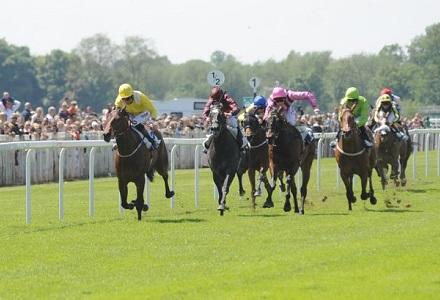 Monday's Money Horse through Oddschecker