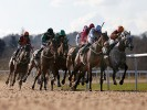 UK Horse Racing Tips: Wolverhampton