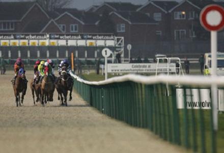 Horse racing betting odds wolverhampton grand sports betting australia statistics beau