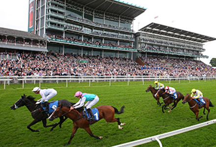 UK Horse Racing Tips: York