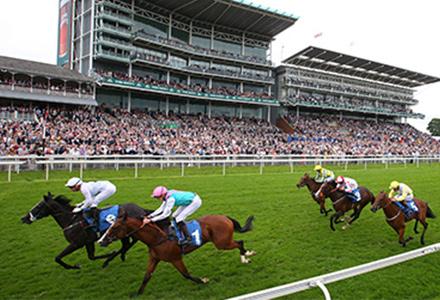 UK Horse Racing Tips: York