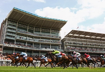 The three most backed horses at York Ebor Festival day one