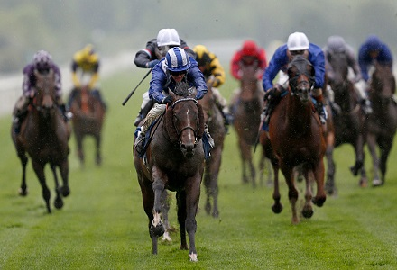 The three most backed horses at York Ebor Festival day four