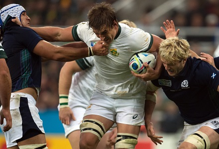 17th Oct - RWC 2015 Best Bets