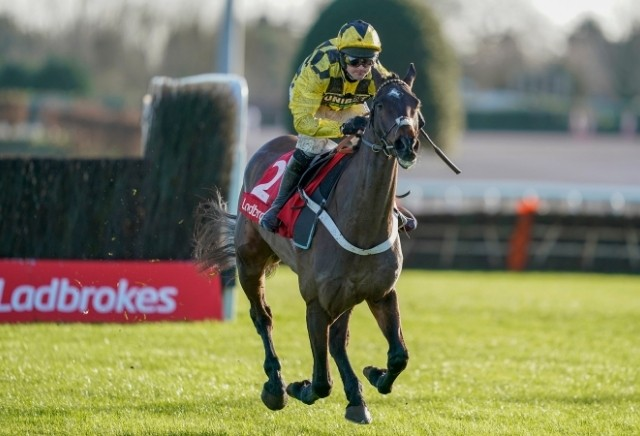 Cheltenham Festival 2021: 5 horses the bookies DON'T want to win