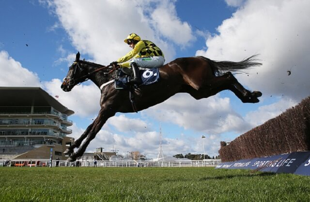 Cheltenham Festival 2022: The 5 most backed horses for next year's Festival