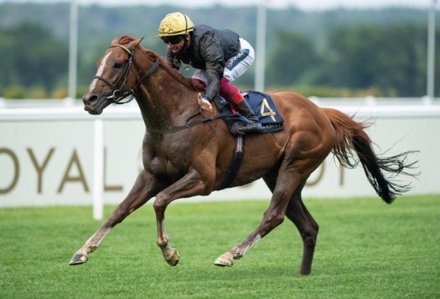 Ascot Gold Cup 2021: Odds, Runners, Bets