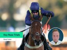 Supreme Novices' Hurdle: The key race trials