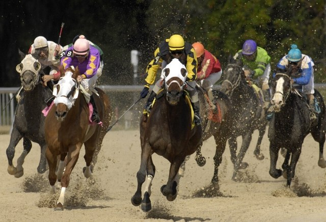 Tuesday US Racing Tips: Will Rogers Down