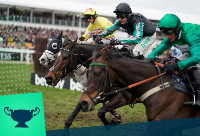 oddschecker horse racing betting cheltenham winner