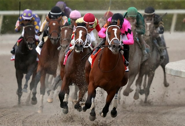 Gulfstream park horse racing oddschecker betting soccer betting predictions